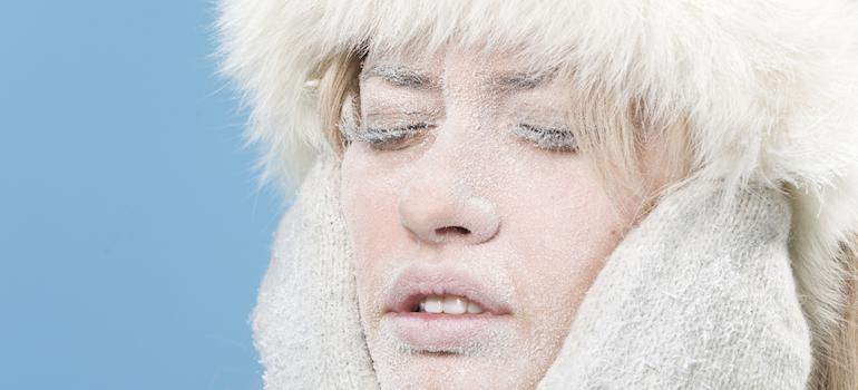 dehumidifiers that work below freezing